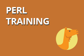 Perl Training
