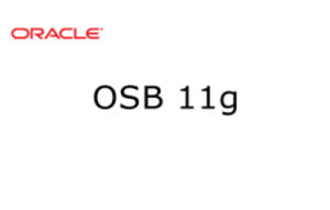 OSB 11g Training in Bangalore