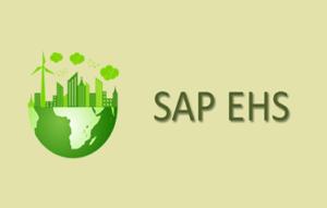 SAP EHS Training in Bangalore