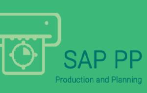 SAP PP Training in Bangalore